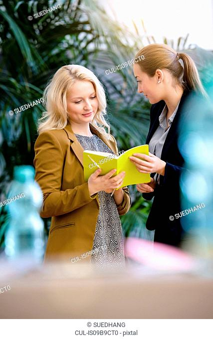 Two young businesswomen looking at notebook in office