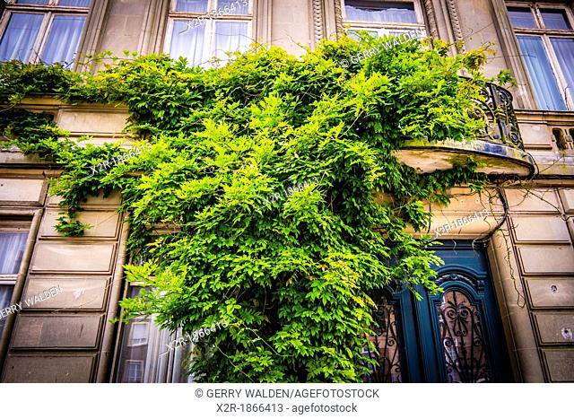 A wisteria covered balcony in Cassel, Normandy, France