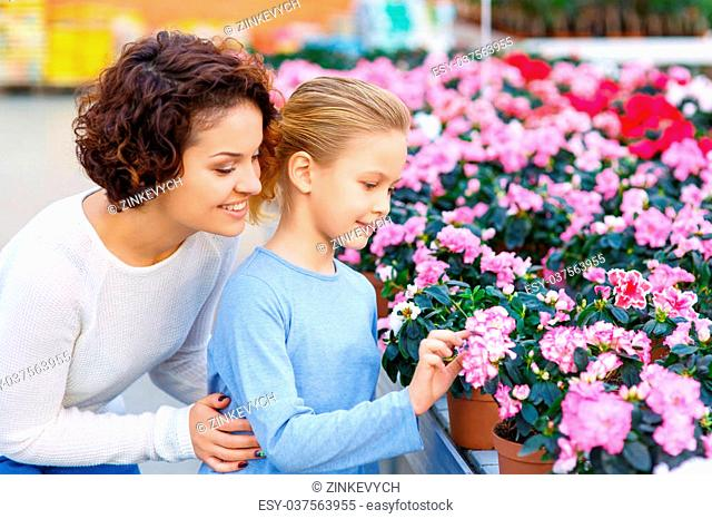 Observing a flower. Daughter and her mother look fascinated with beautiful pink flower bushes