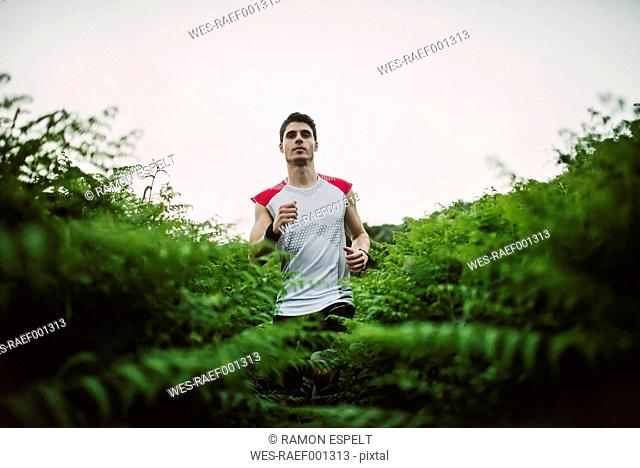 Trail runner, man running