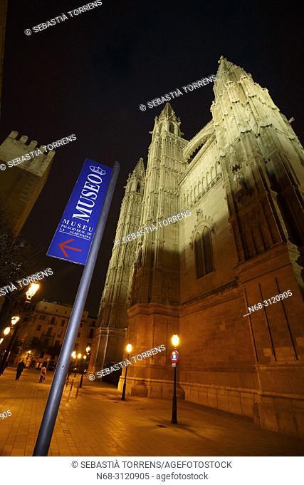 Palma cathedral and sign of l'almudaina museum at night, Palma, Majorca, Balearic Islands, Spain