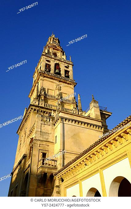 The bell tower of the Mezquita Cathedral, Cordoba, Andalucia, Spain, Europe
