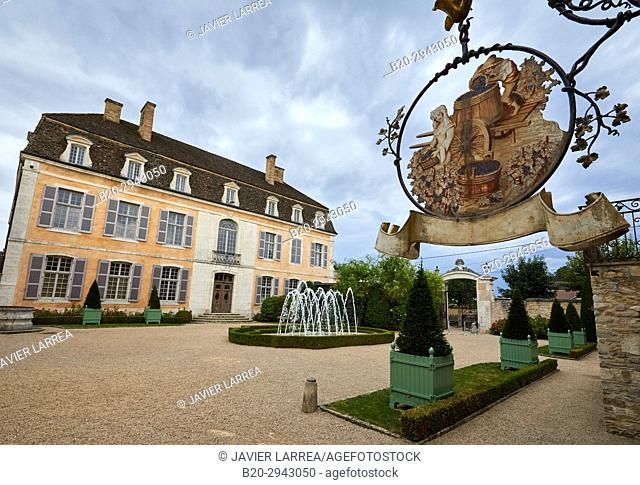 Château de Pommard, Wine route of the Grands Crus, Pommard, Côte de Beaune, Côte d'Or, Burgundy Region, Bourgogne, France, Europe