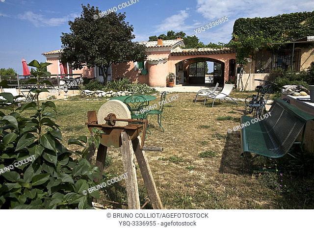 Vauveniere organic farm estate, at Monsieur and Madame Sauvaire's. Saint Jurs. Alps of High Provence, France