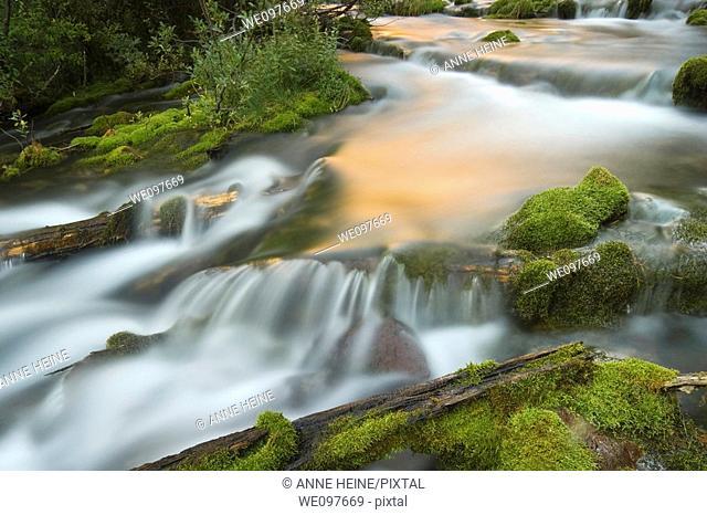 long exposure of natural creek,flowing water
