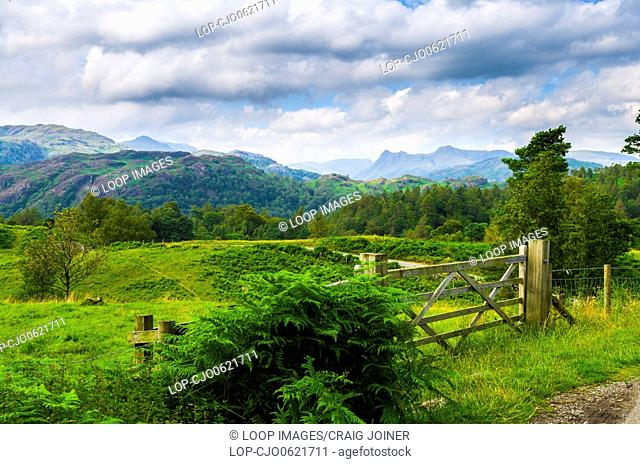 Summer view of Holme Fell and the Langdale Pikes near Coniston in the English Lake District