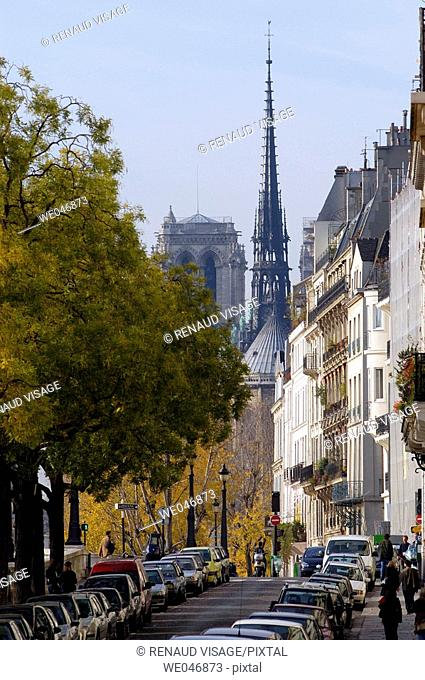 Notre Dame Cathedral in the fall. Paris. France