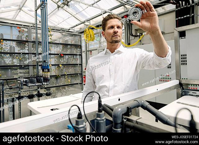 Businessman examining equipment while standing in greenhouse