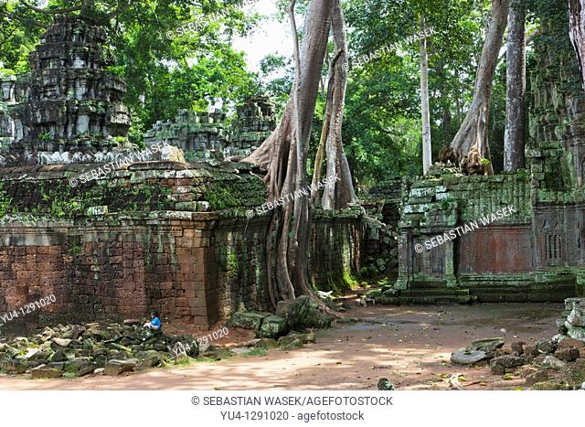 Ruins at archaeological site, Ta Prohm temple, Angkor, UNESCO World Heritage Site, Cambodia, Indochina, Southeast Asia, Asia