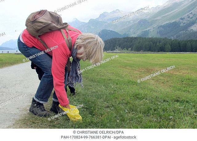 Picture of Christa Alder picking up the waste of her dog Henry, taken at a meadow near Sils lake in the canton of Graubunden, Switzerland, 21 July 2017