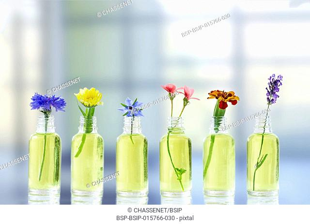 Different healing flowers in small glass bottles essential oil