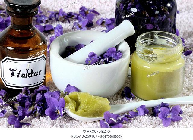 Sweet Violet tincture and ointment Viola odorata