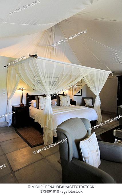 Savanna Game Lodge, Sabi Sands Game Reserve, Mpumalanga, South Africa