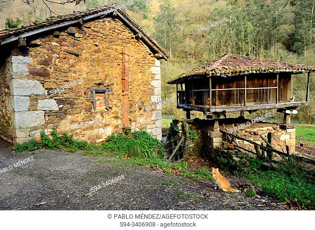Traditional Asturian granary. Green Path of Trubia river or Bear's Path, between Tuñon and San Andres, Asturias, Spain