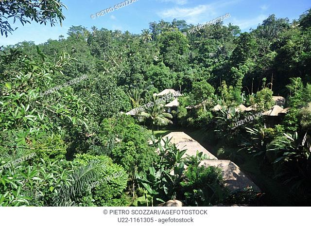 near Ubud (Bali, Indonesia): the Ubud Hanging Gardens Hotel