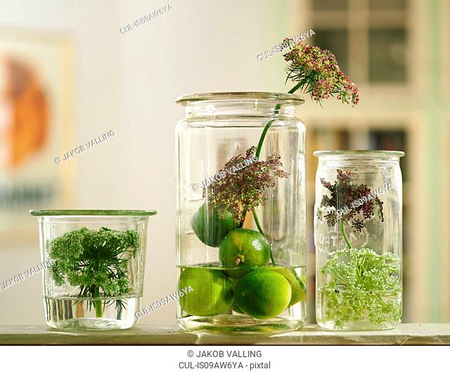 Three vintage jars with seed pods and wildflowers on living room shelf