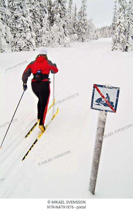 Woman cross country skiing during winter
