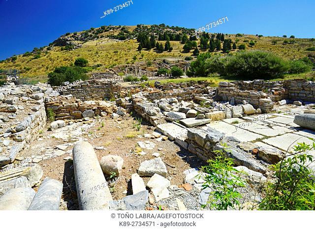 State Agora. Ephesos. Ancient Greece. Asia Minor. Turkey