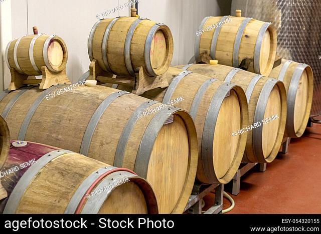wine cellar with wooden barrels, Southern Moravia, Czech Republic