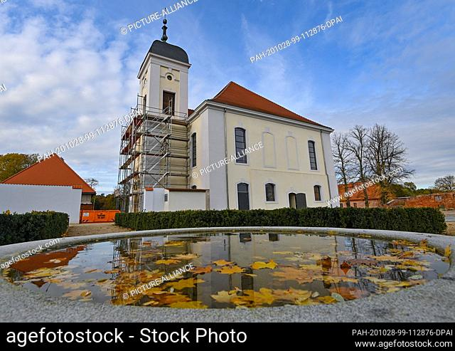 28 October 2020, Brandenburg, Altlandsberg: The autumnally coloured leaves of a maple tree float in a fountain and the castle church is reflected in it