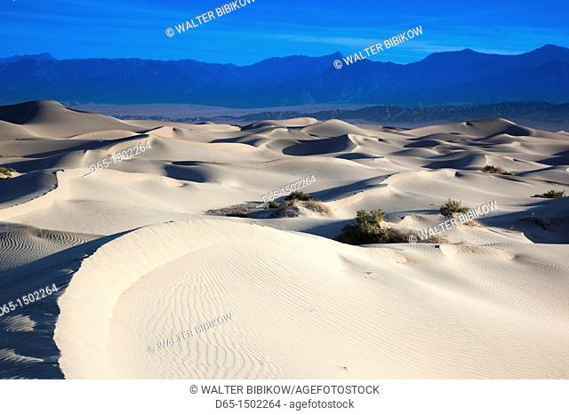 USA, California, Death Valley National Park, Mesquite Flat Sand Dunes, dawn