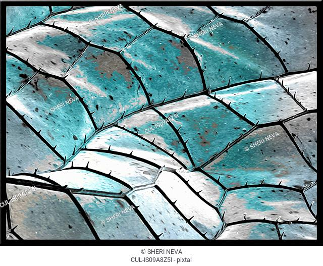 Blue dragonfly wing, SEM, color enhanced