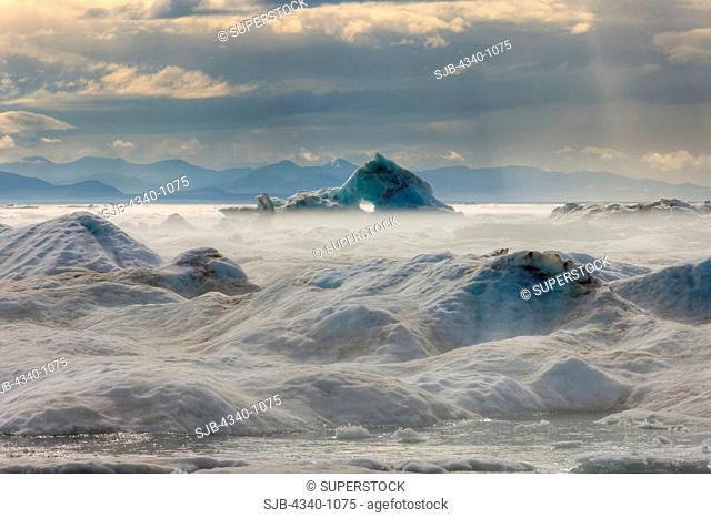 Shorefast Ice in the Beaufort Sea During Summertime