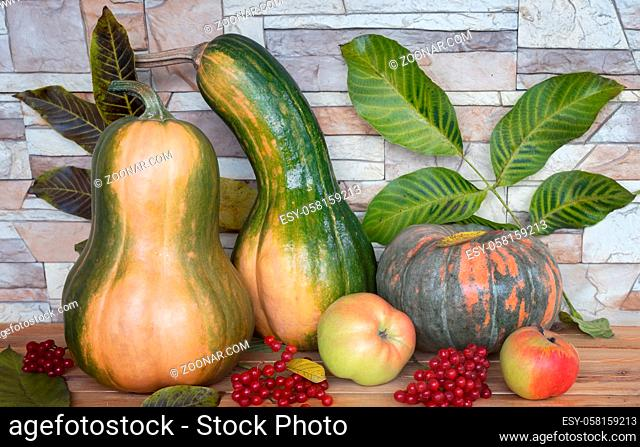 On the table among the autumn leaves are ripe pumpkins of various varieties, apples, viburnum berries. Front view, close-up