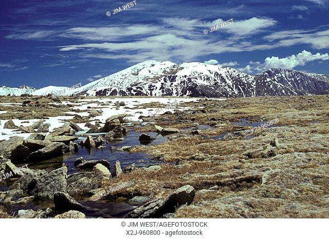 Rocky Mountain National Park, Colorado - Alpine tundra at around twelve thousand feet elevation near Trail Ridge Road and the continental divide