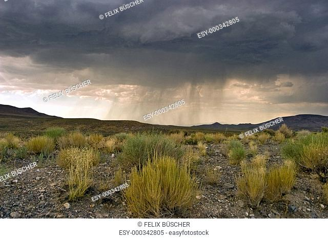 Gewitter in der Wüste von Nevada