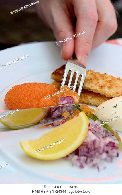 Sweden, Vasterbotten County, Umea, European capital of culture 2014, restaurant Rex, whitefish roe, classic trimmings and pan-fried bread