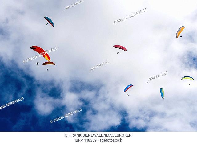 Many paragliders are flying in the air, over Pokhara and Phewa Lake, Sarangkot, Kaski District, Nepal