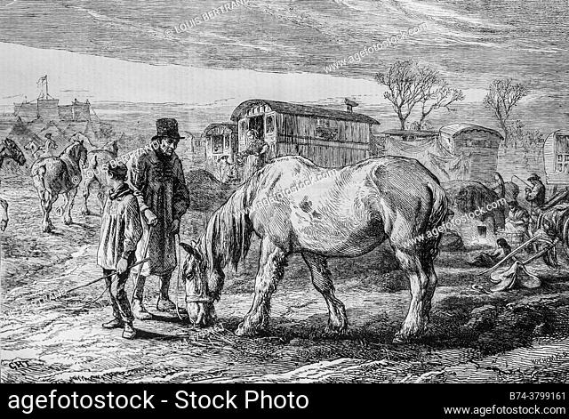 the old friend the horse, the illustrious universe, publisher michel levy 1868