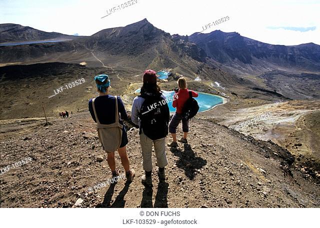 People standing on top of Mt.Taranaki Mt. Egmont, view to Mt. Ruapehu, North Island, New Zealand