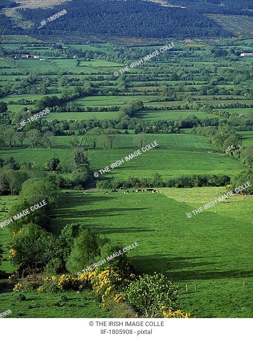Glen Of Aherlow, Co Tipperary, Ireland