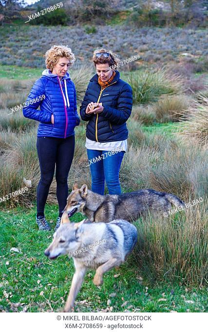 Czechoslovakian wolfdogs and women