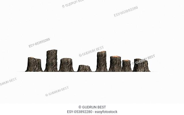 several tree stumps - isolated on white background - 3D illustration