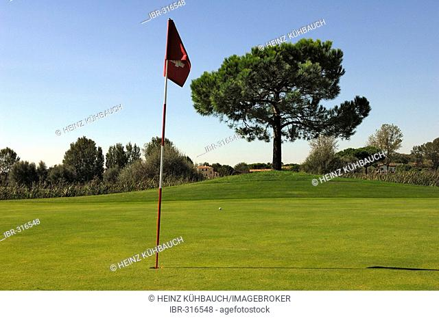 Puttinggreen with flag, golf course, Caorle, Veneto, Italy