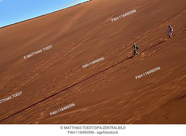 Two visitors walk down one of the high dune surrounding Dead Vlei, taken on 01.03.2019. The Dead Vlei is a dry, surrounded by tall dune clay pan with numerous...