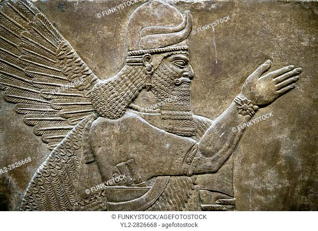 Assyrian relief sculpture panel of a protective spirit from Nimrud, Iraq. 865-860 B. C North West Palace, Room Z. ref: British Museum Assyrian Archaeological...