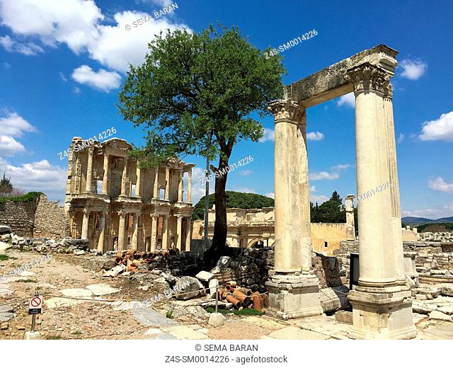 Corinthian columns and library of Celsus at the Roman ruins of Ephesus, Efes, Selcuk, Kusadasi, Turkey, Europe