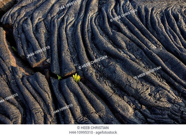 USA, Vereinigte Staaten, Amerika, Hawaii, Big Island, Puna District, frozen lava