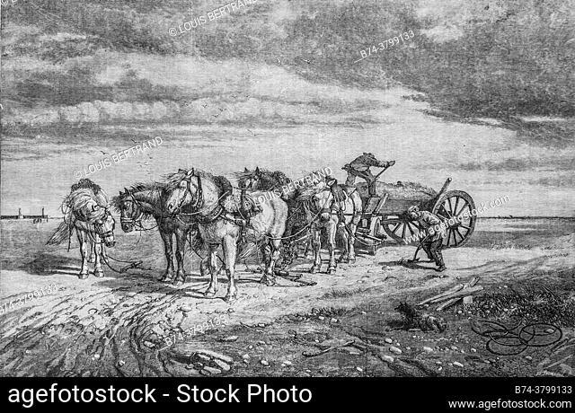 the sand collectors on the strikes of the pas de calais, ; the illustrious universe, publisher michel levy 1868