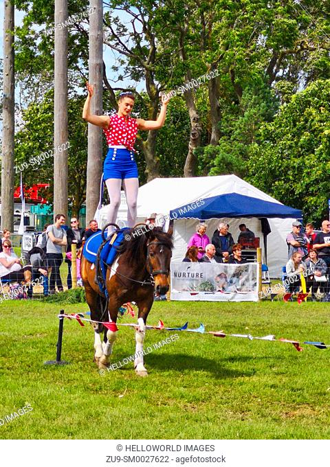 Young woman standing balancing on horseback in display at the Three Counties Show 2019, Malvern, Worcestershire, England