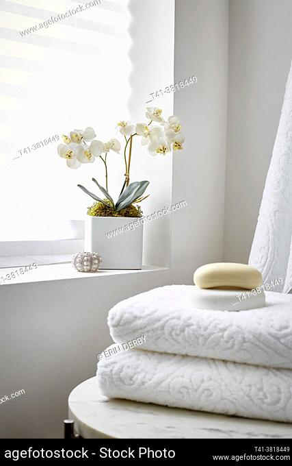 An orchid in the corner of a spa, an all-white room