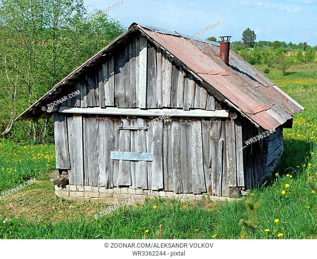 The small broken no name wooden rural shed is located in the wood on a glade with dandelions
