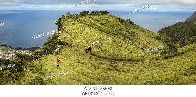 Hiker walking on hilltop path in rural landscape