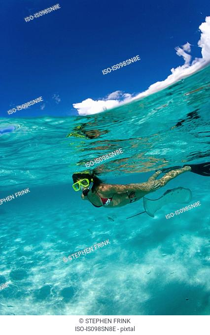 Snorkeler in shallow water