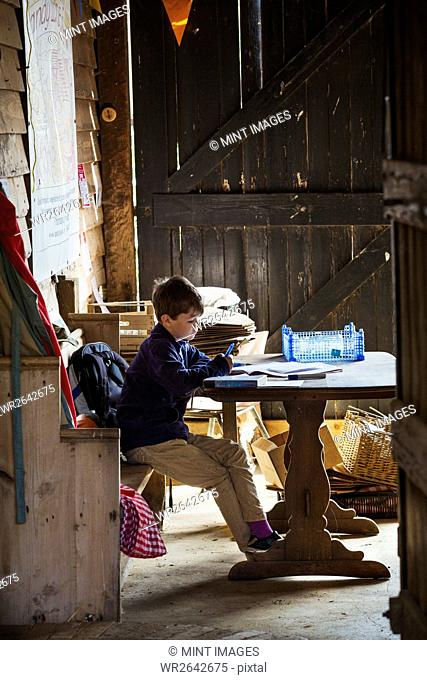 A child seated in a barn at a table doing his homework