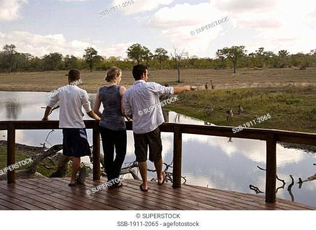 tourists Arathusa Safari Lodge Sabi Sand Reserve Mpumalanga South Africa